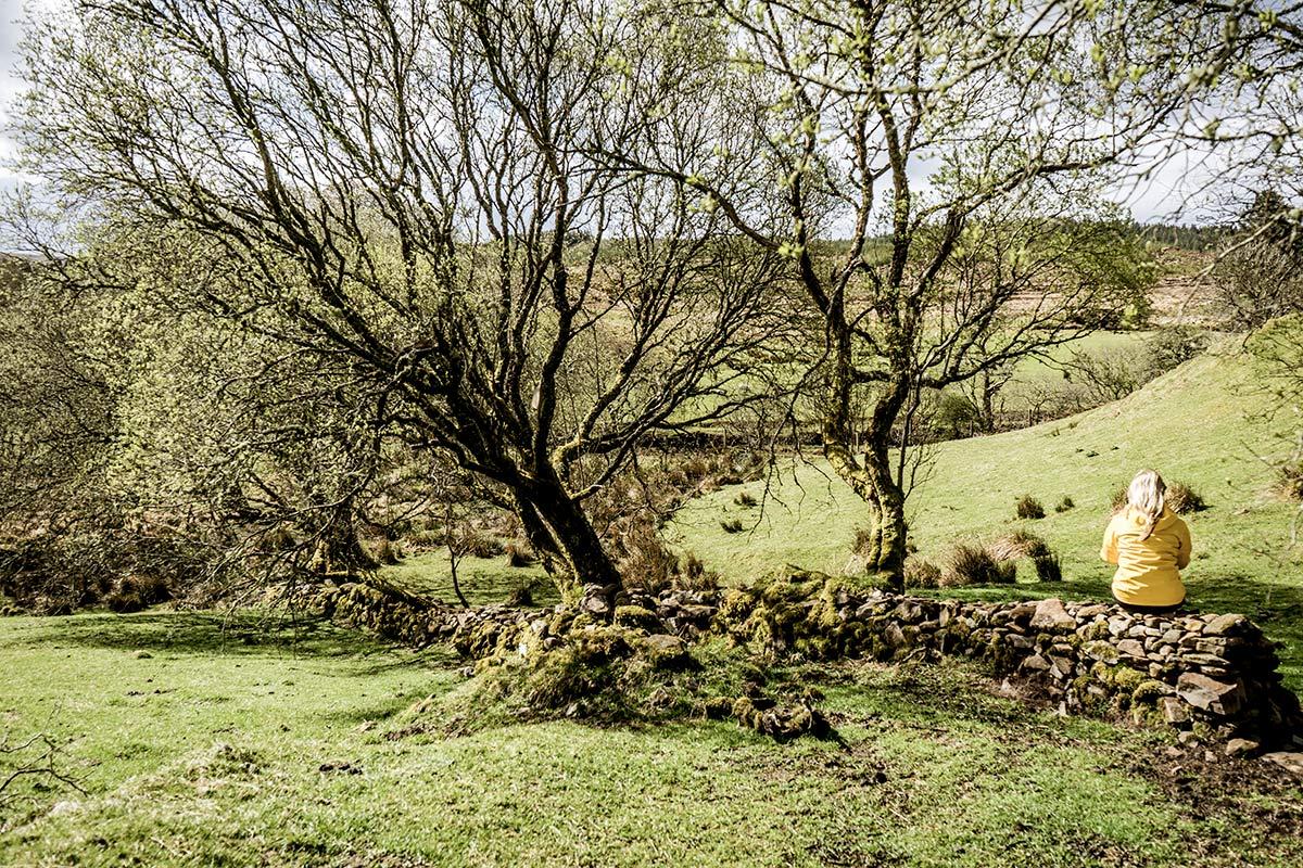 Irland Donegal Disert Graveyard