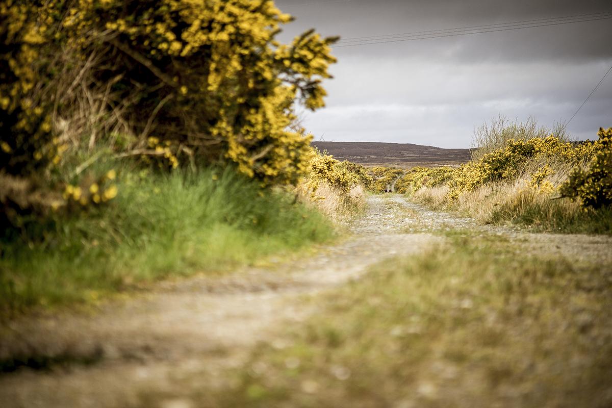 Irland Donegal Wanderweg