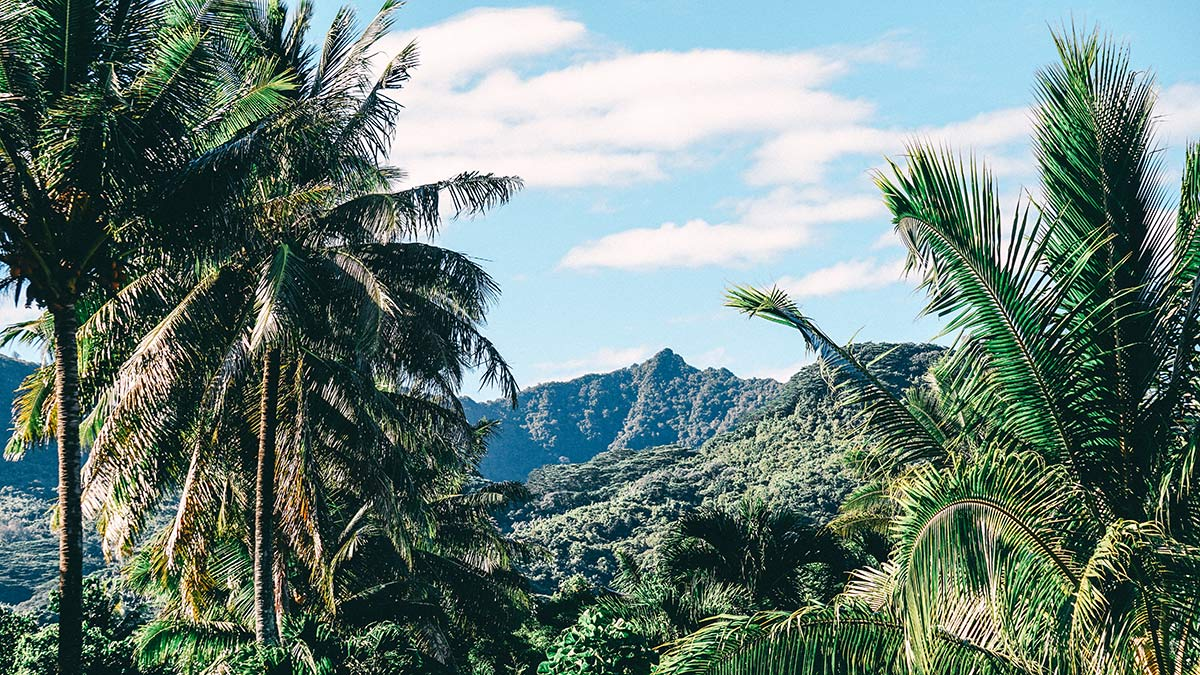 Rarotonga Impression Landschaft Bergkette