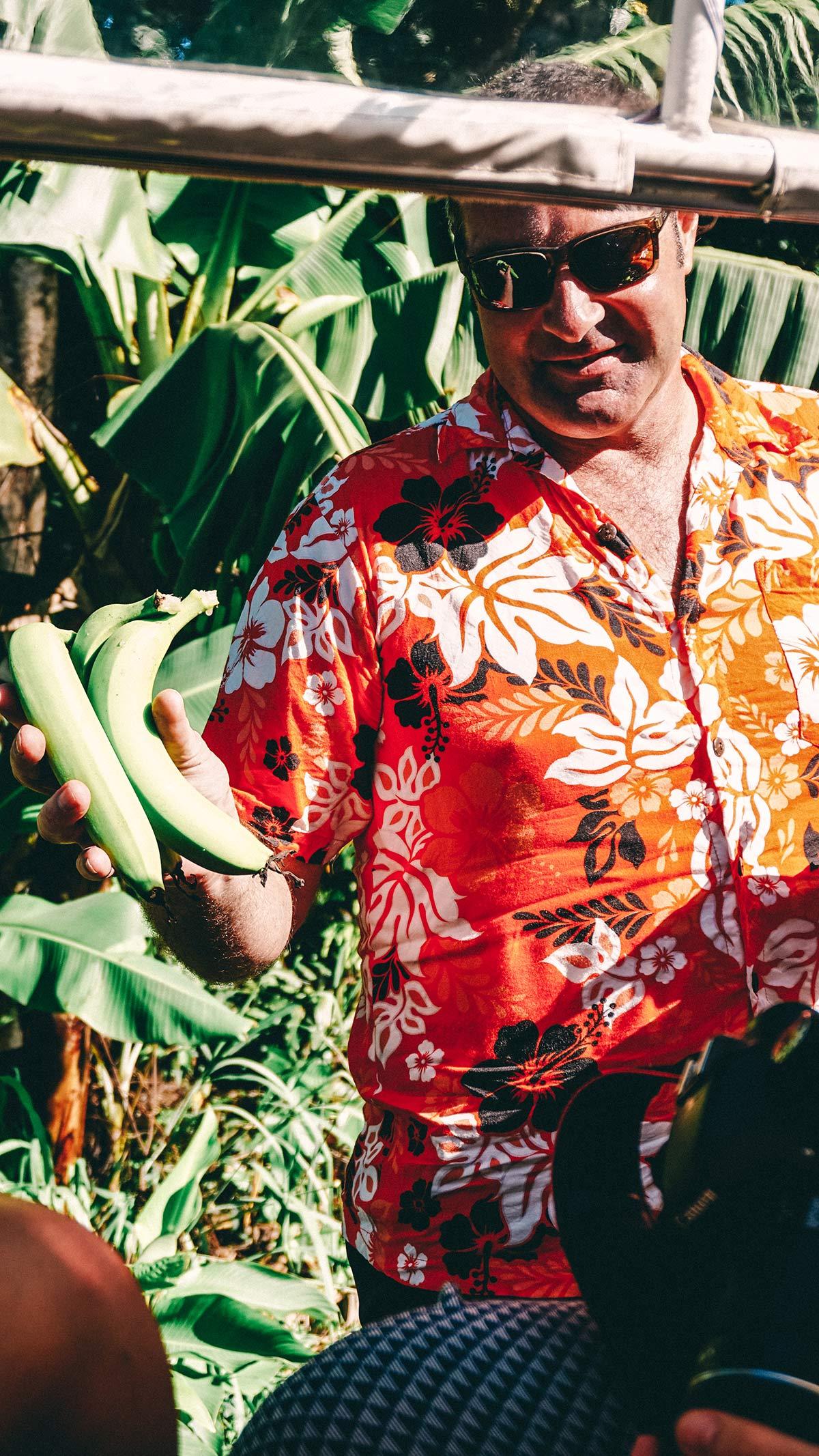 Kostprobe frischer Bananen