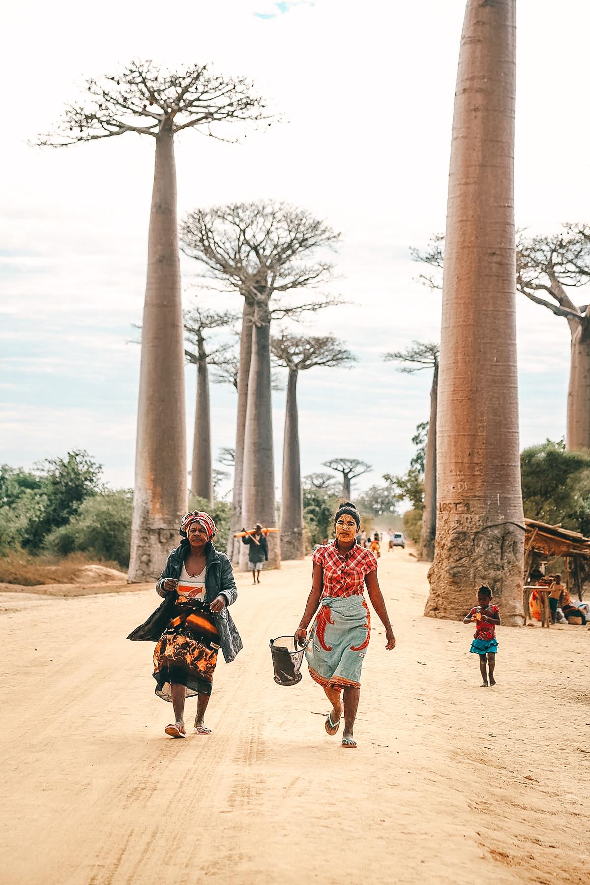 Frauen auf der Baobab Allee