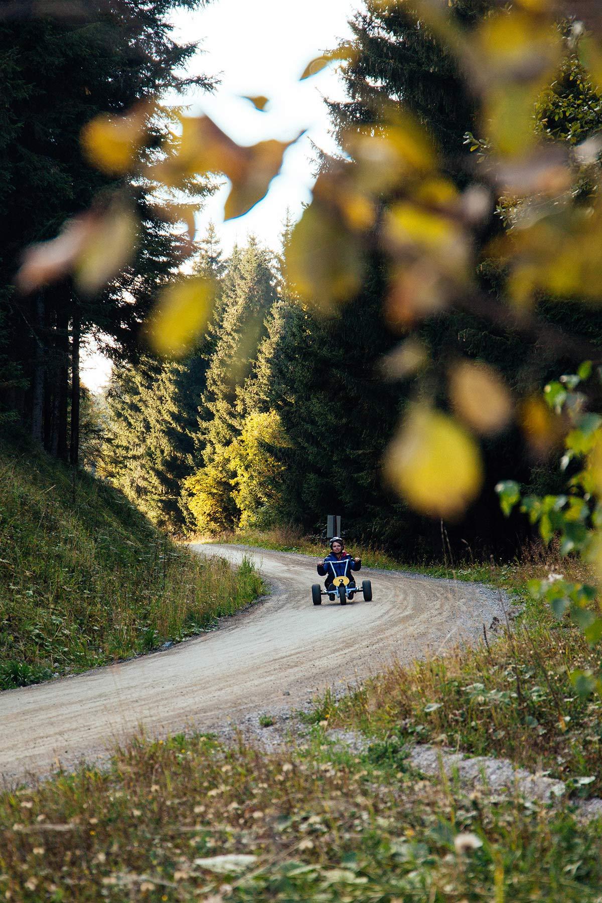 Mountain Go Kart in Schladming