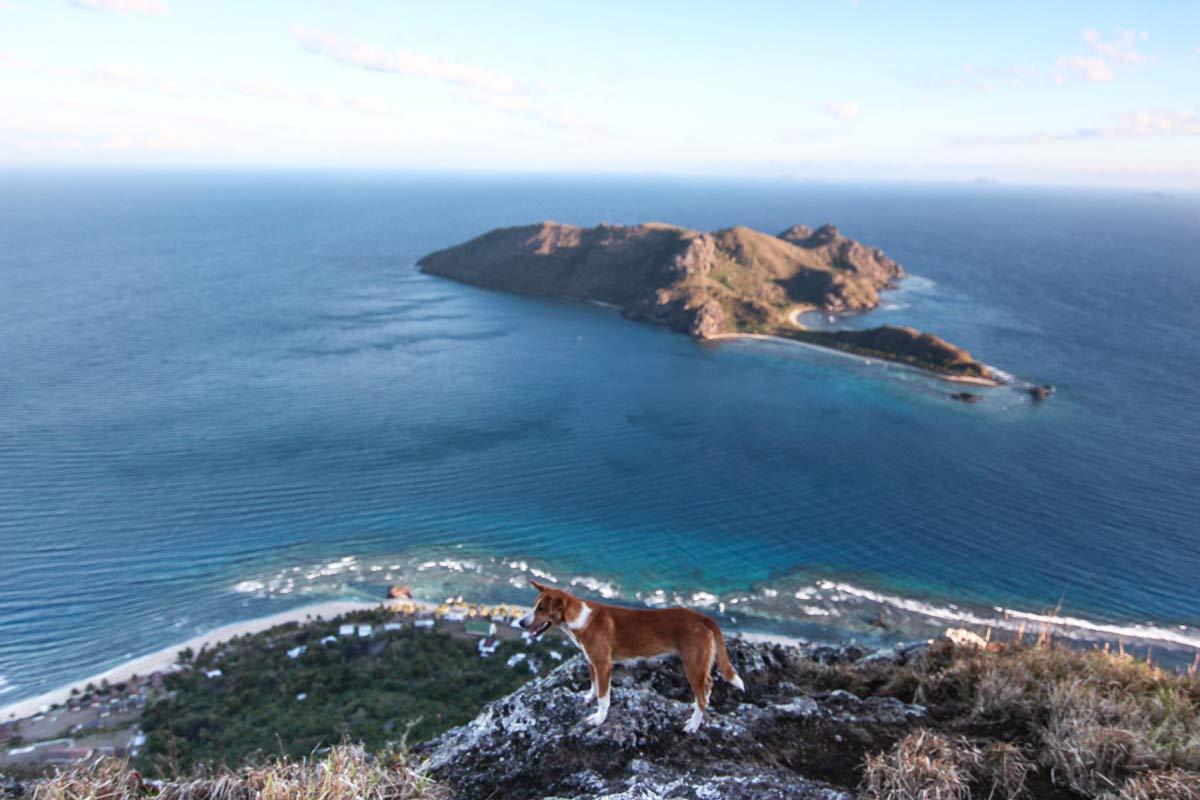 Wandern auf Fidschi