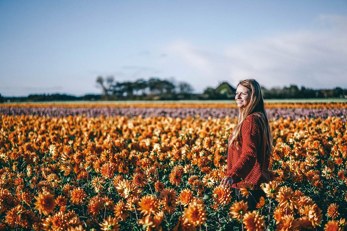 Blumenwiese Texel Christine Neder