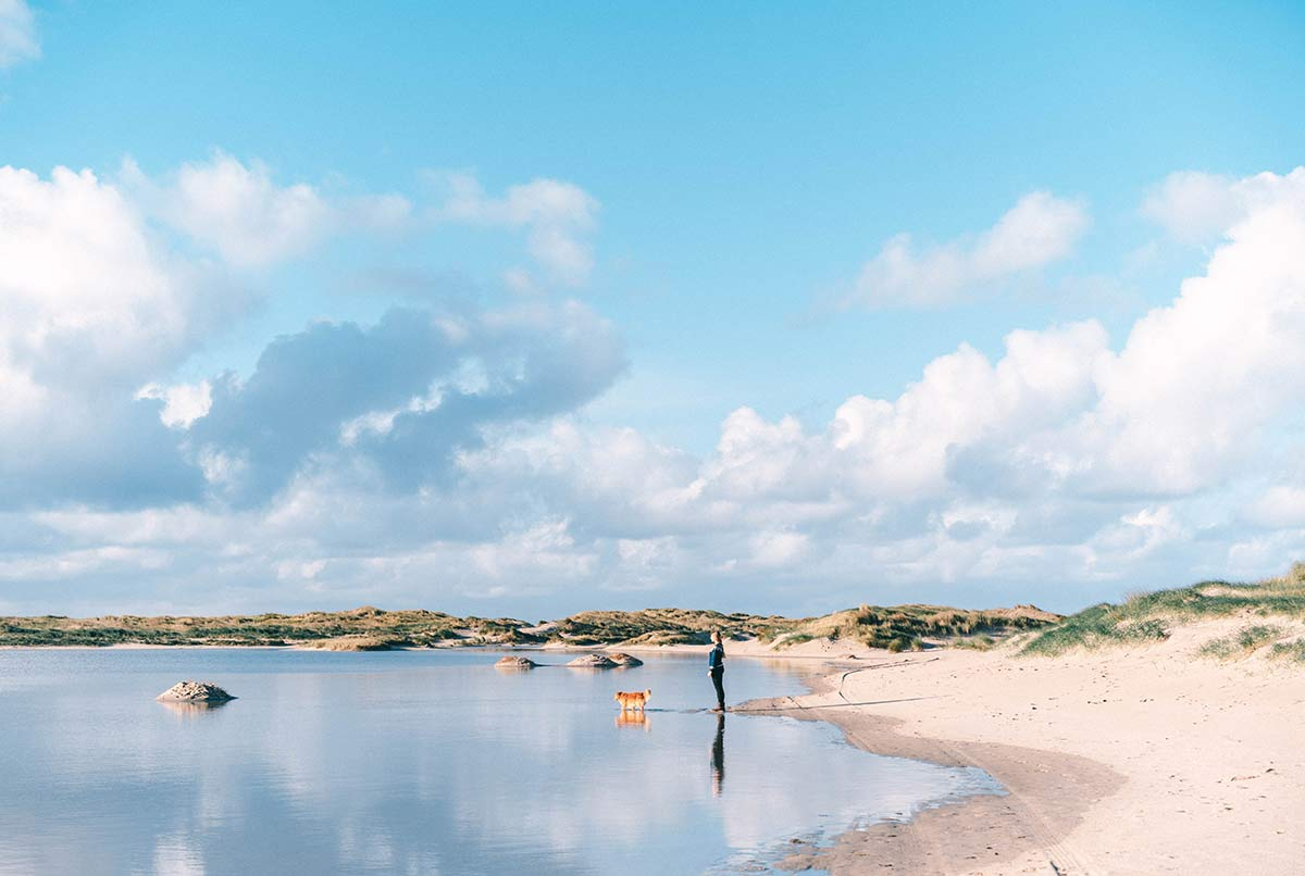 Duenensee Nationalpark de Hors Texel