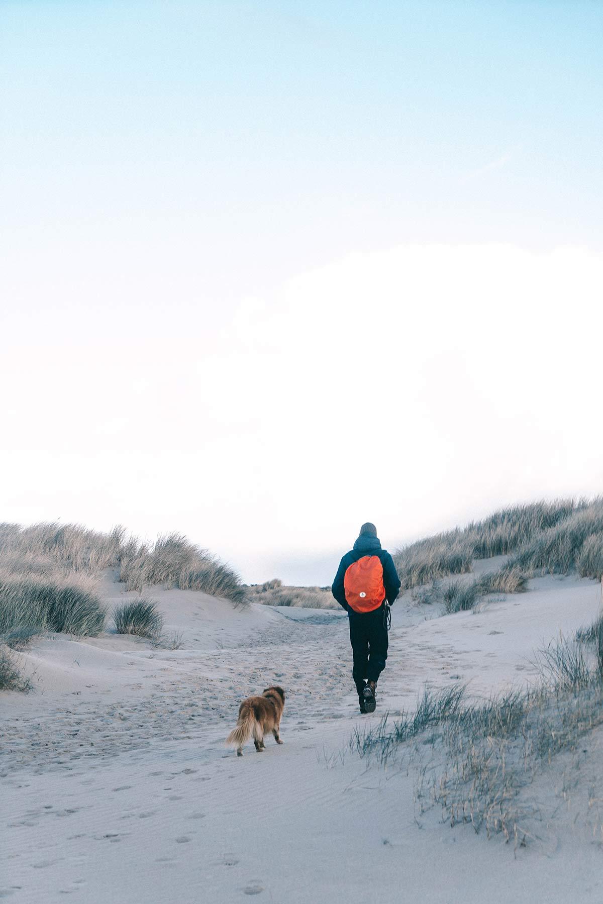 Texel Wanderung Nationalpark de Hors