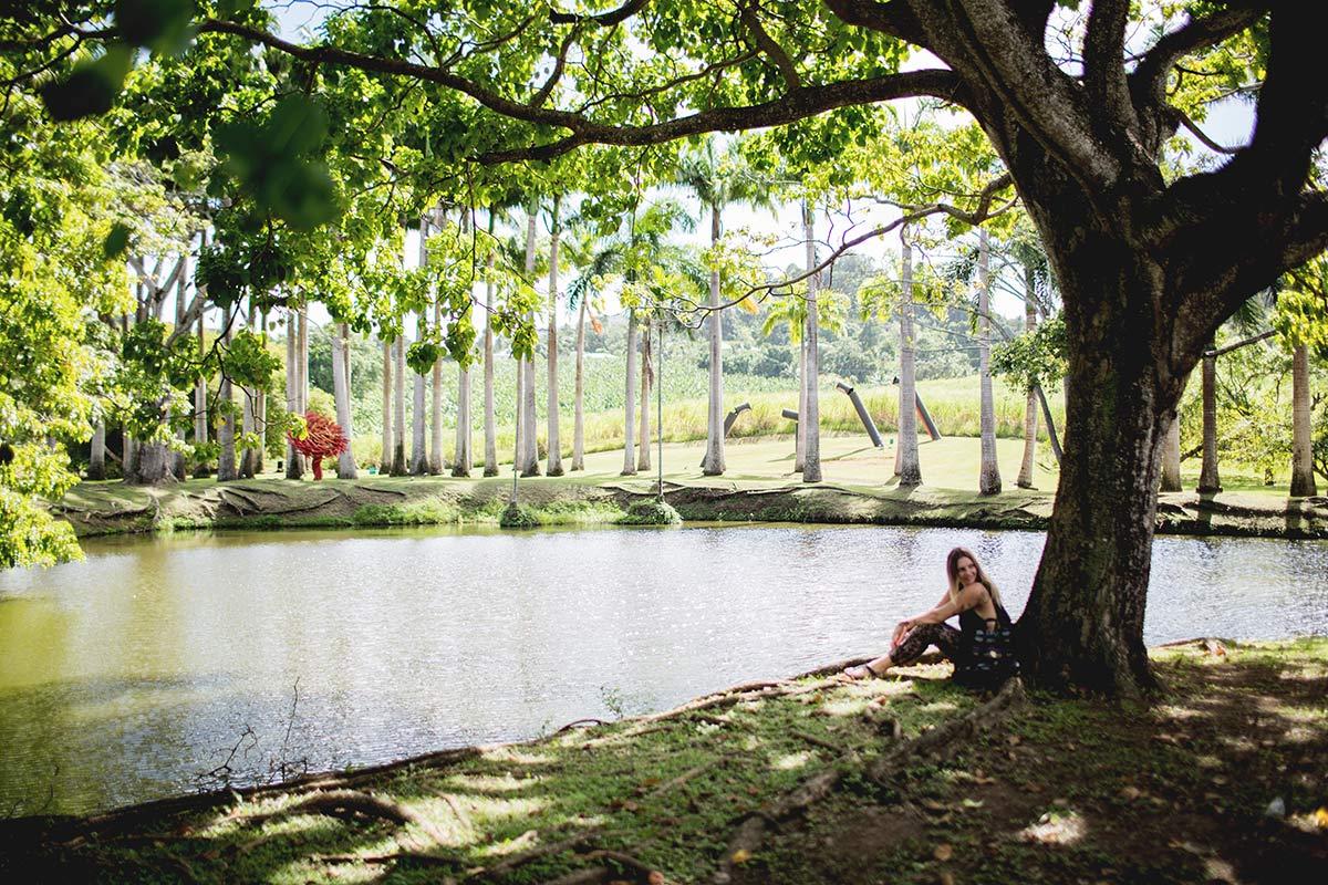 Habitation Clement Martinique Botanischer Garten
