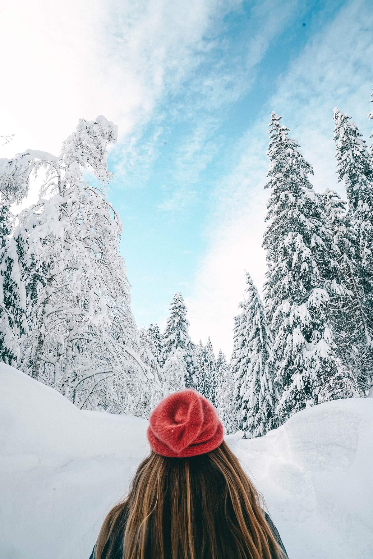 Christine Neder Winterlandschaft Leogang
