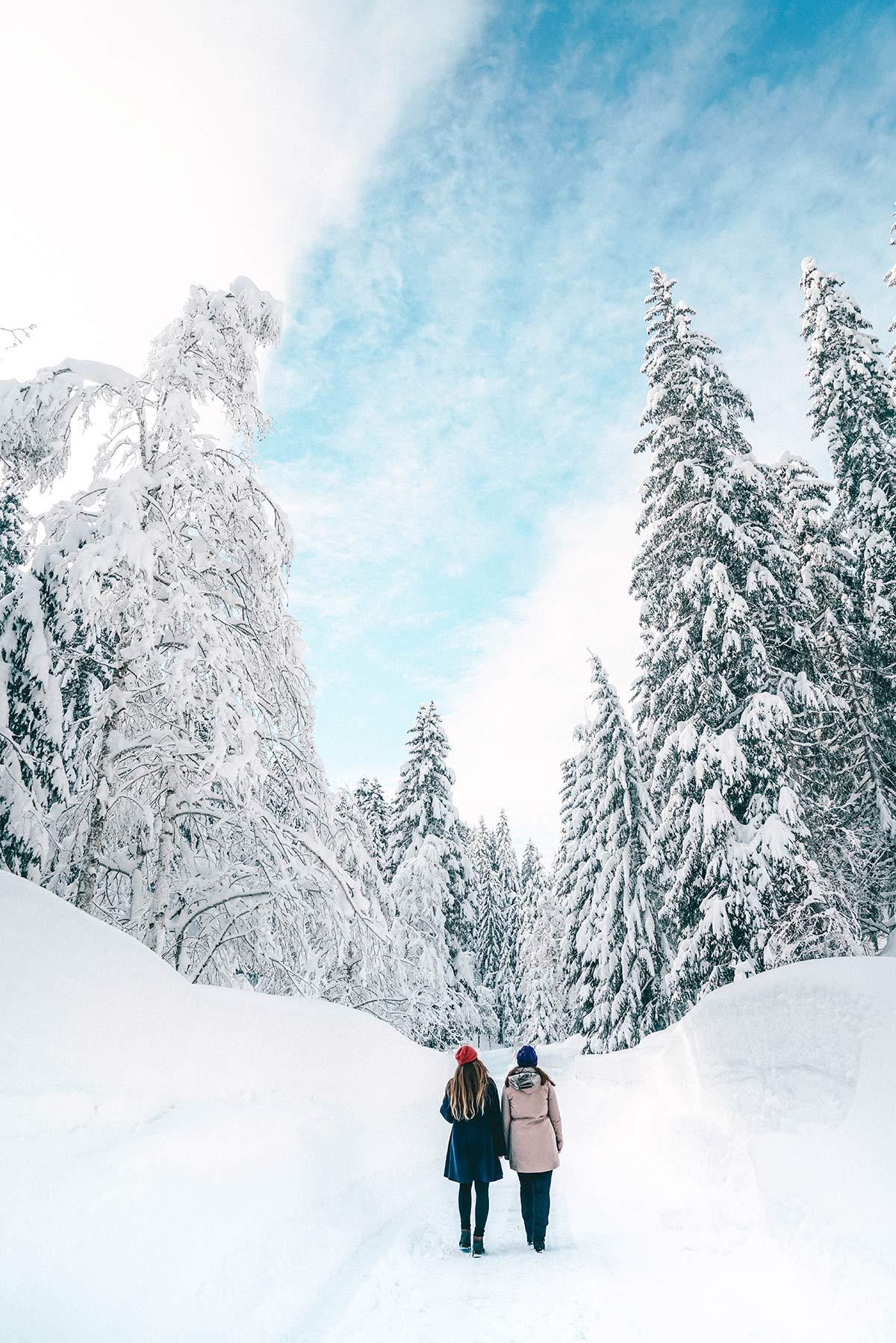 Winterlandschaft Saalbach Hinterklemm Leogang