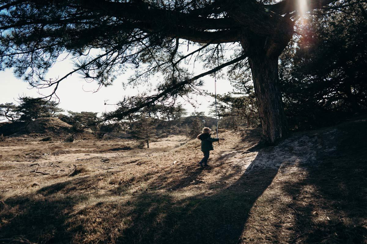 Landschafte Fanoe Daenemark