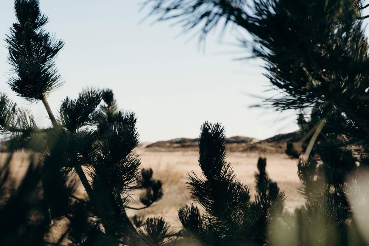 Landschaftsaufnahme Fanoe