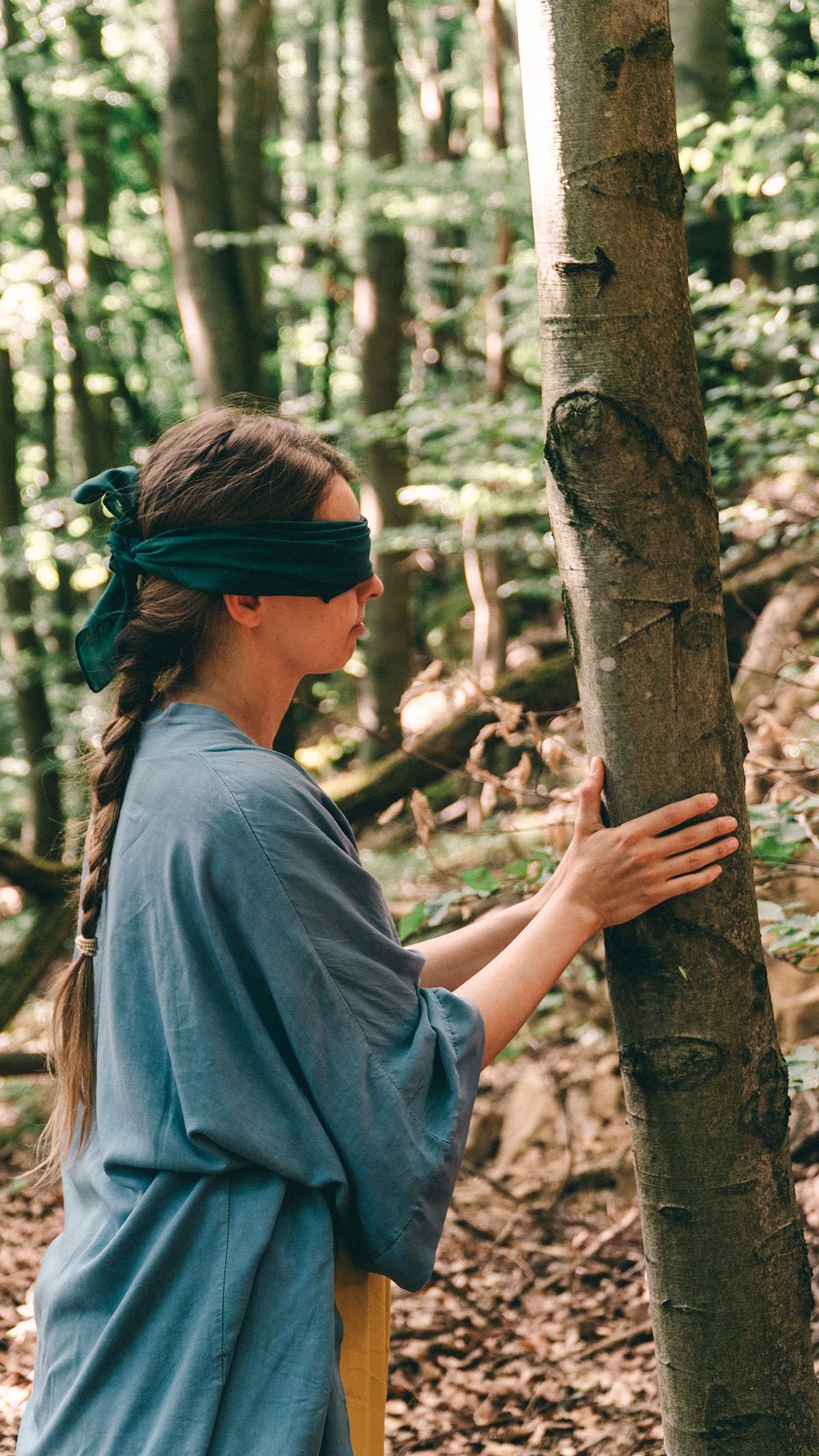 Waldbaden Baum tasten