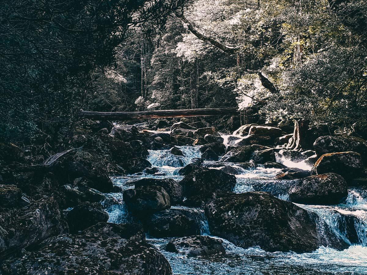 Wasserfaelle Tasmanien Roadtrip