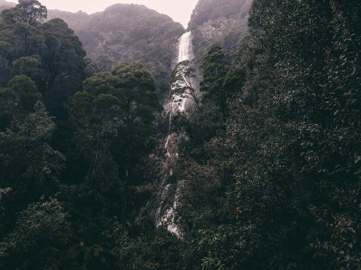 Wasserfall Tasmanien