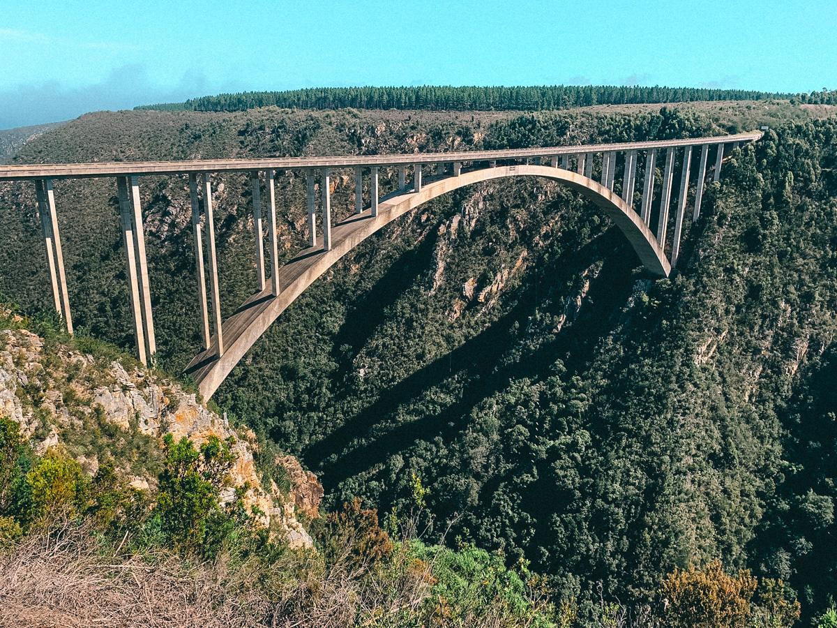 Bungeesprung von Blouberg Bridge