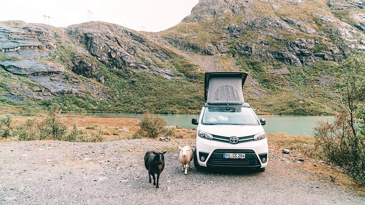 Campervan Norwegen