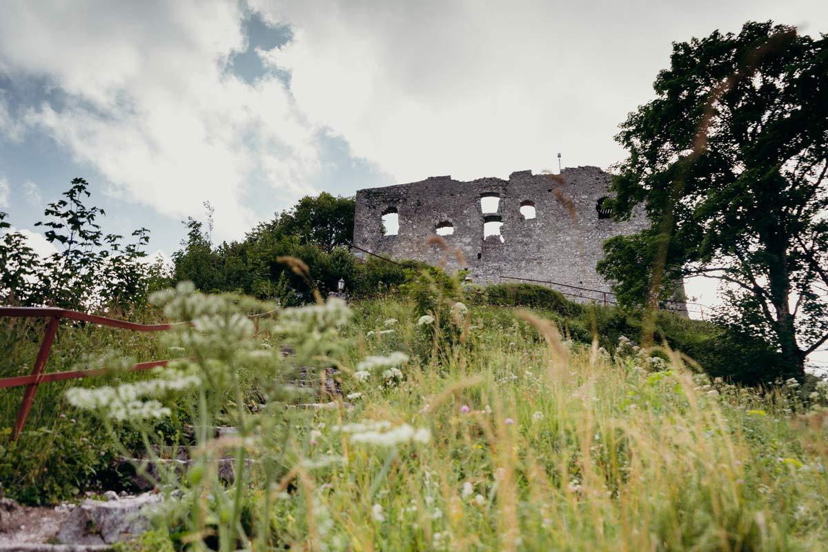 Falkenstein Burgruine