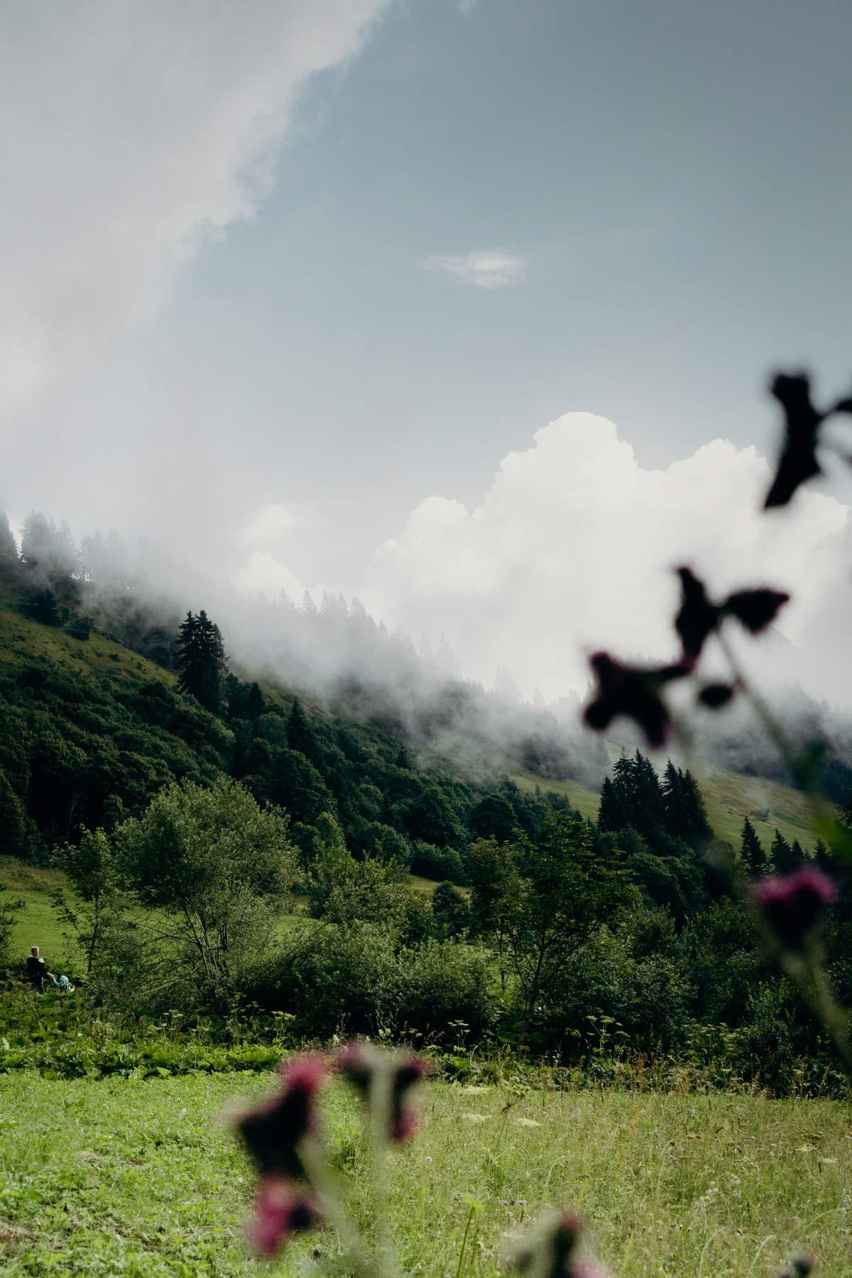 Nebel Lofer Almwelt Wanderung