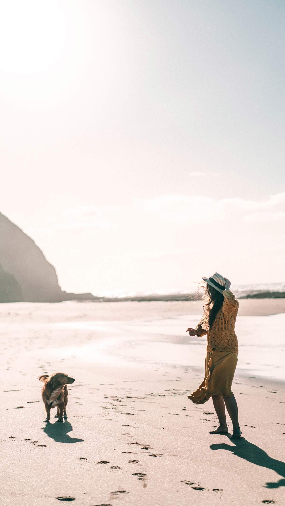 Hund und Herrchen am Strand