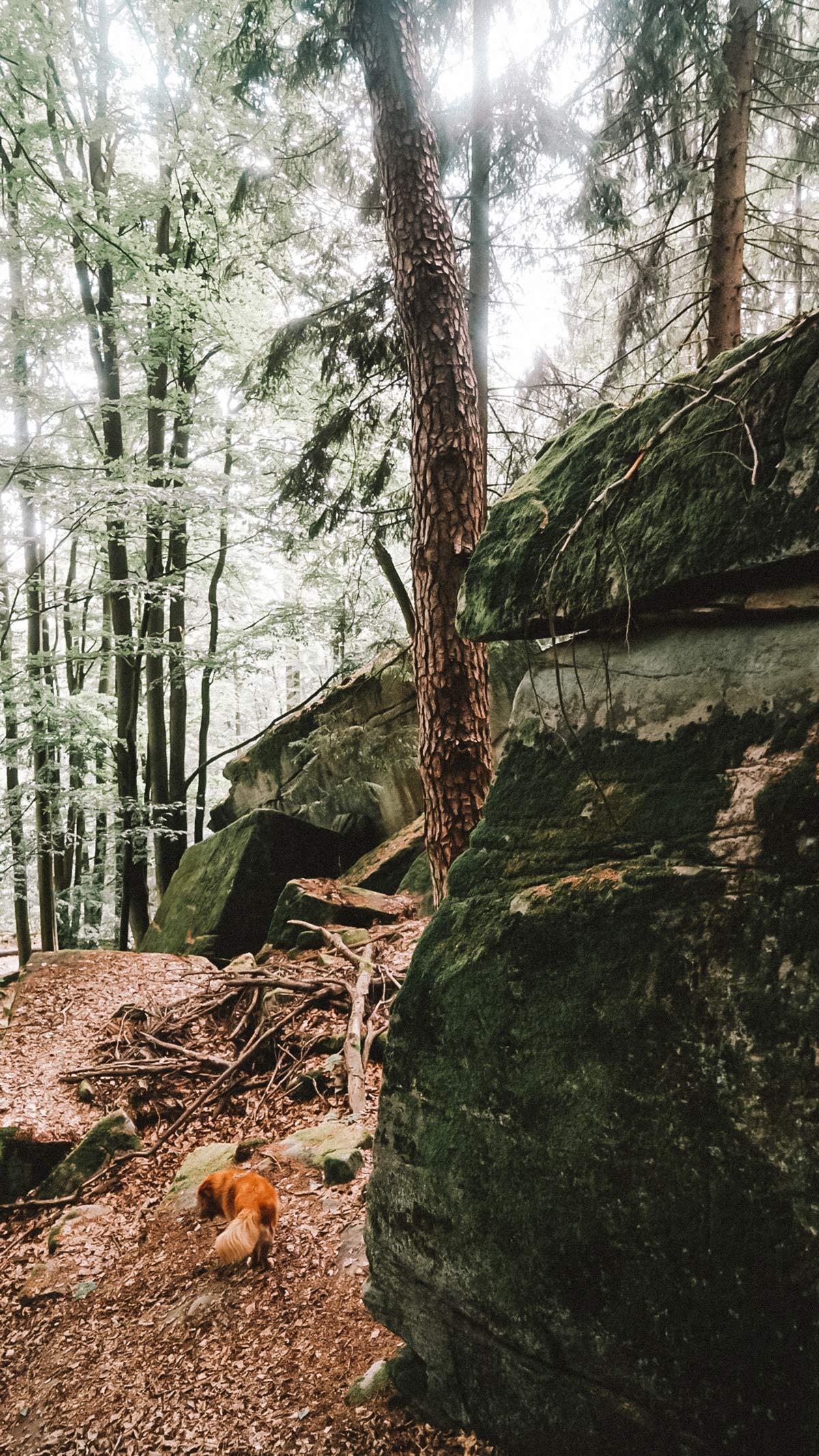 Rhoen Grosse Steine