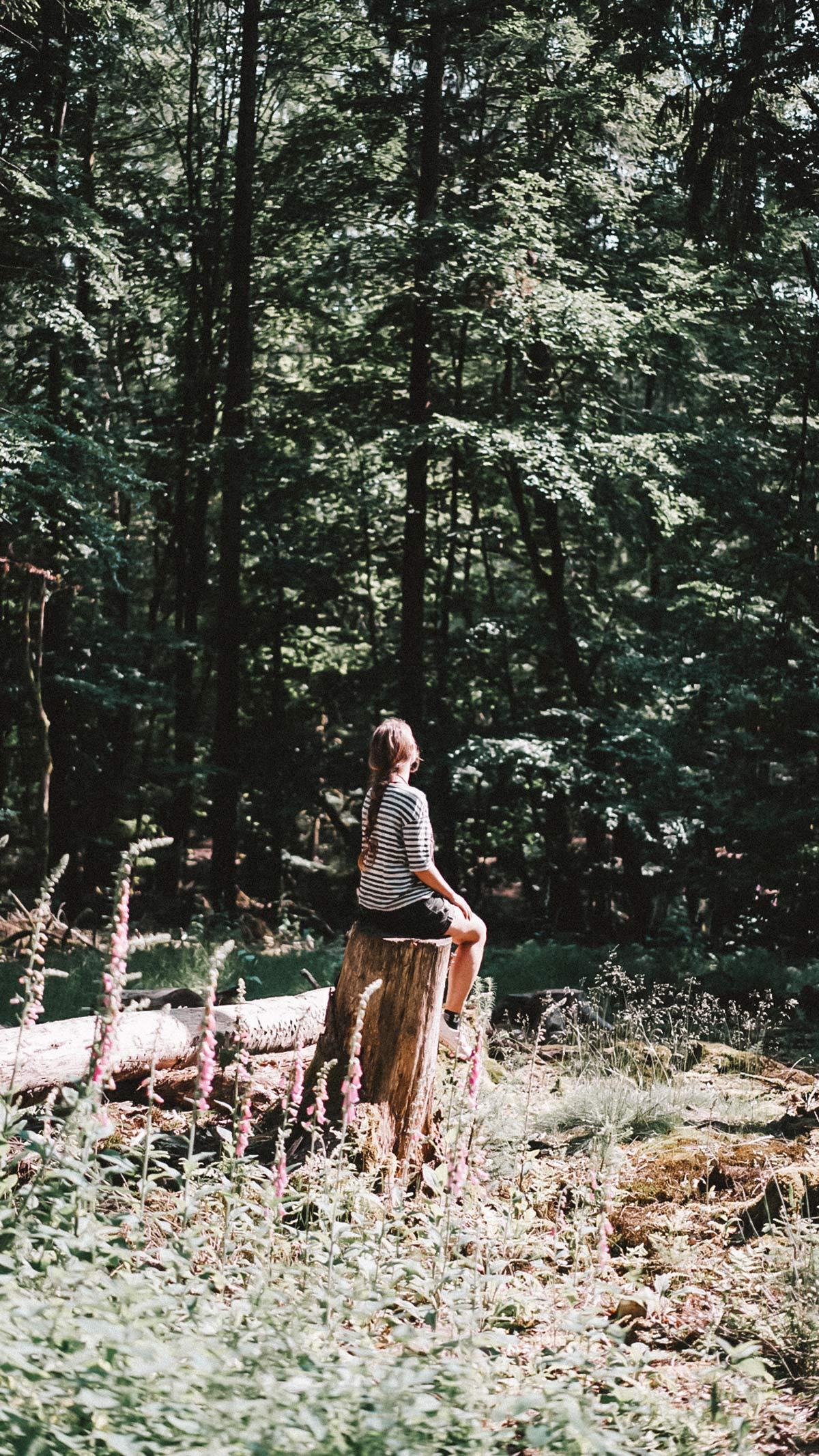 Wald Rhoen