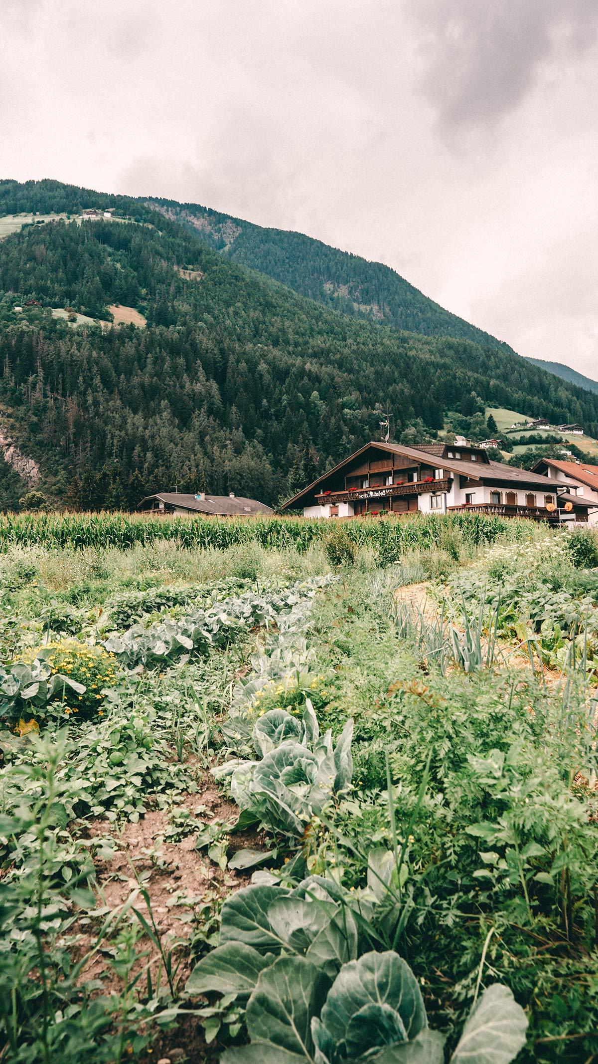 Hotel Drumlerhof Südtirol Roadtrip