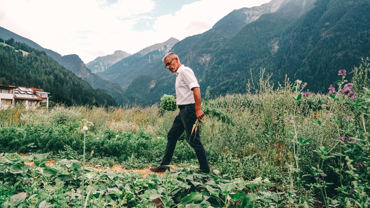 Suedtirol Sehenswuerdigkeiten: 0 km Gerichte Garten