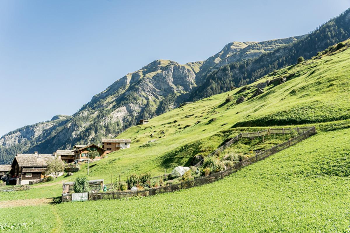 Kraeutergarten in Vals in der Schweiz