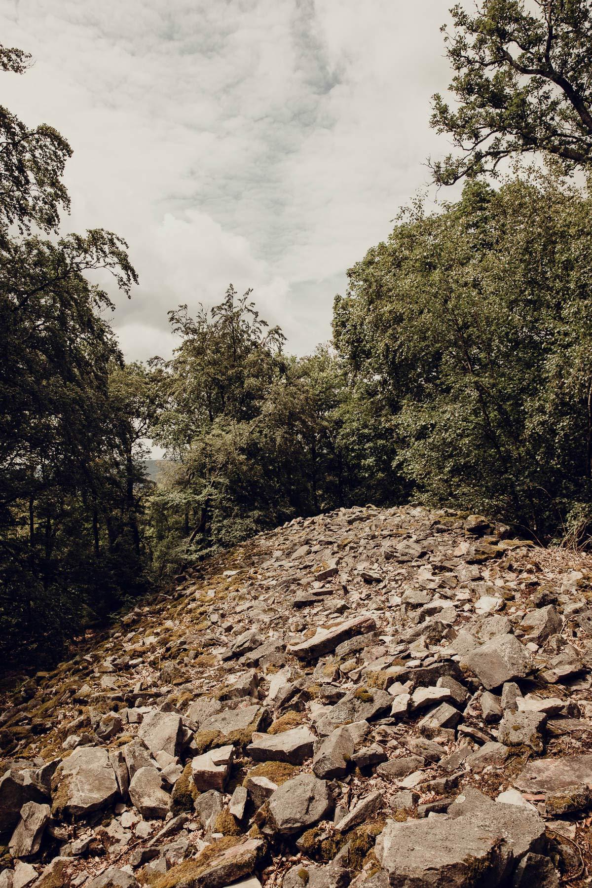 Keltischer Ringwall Saarland Sehenswuerdigkeiten