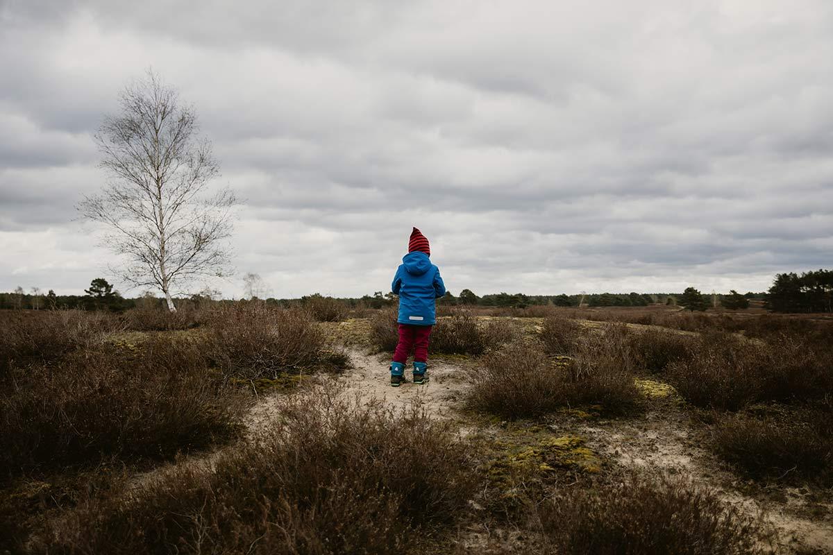 Nemitzer Heide im Wendland