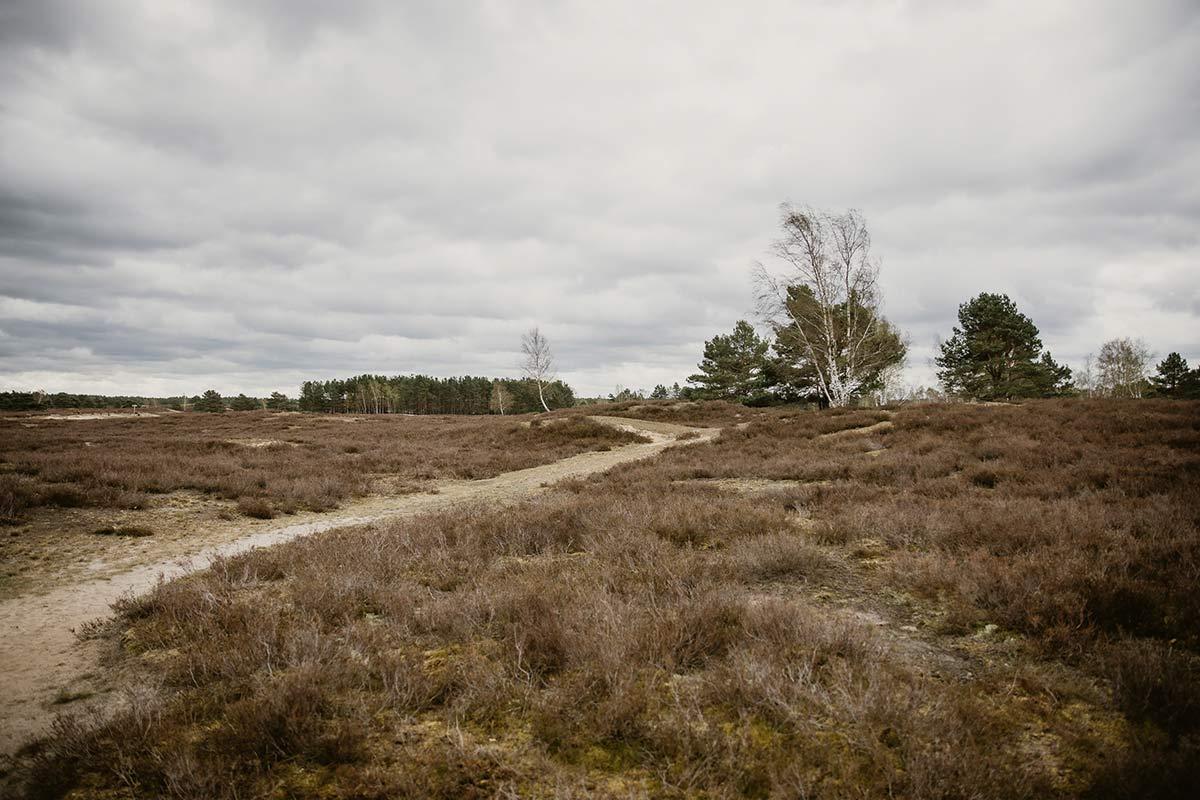 Nemitzer Heide wandern