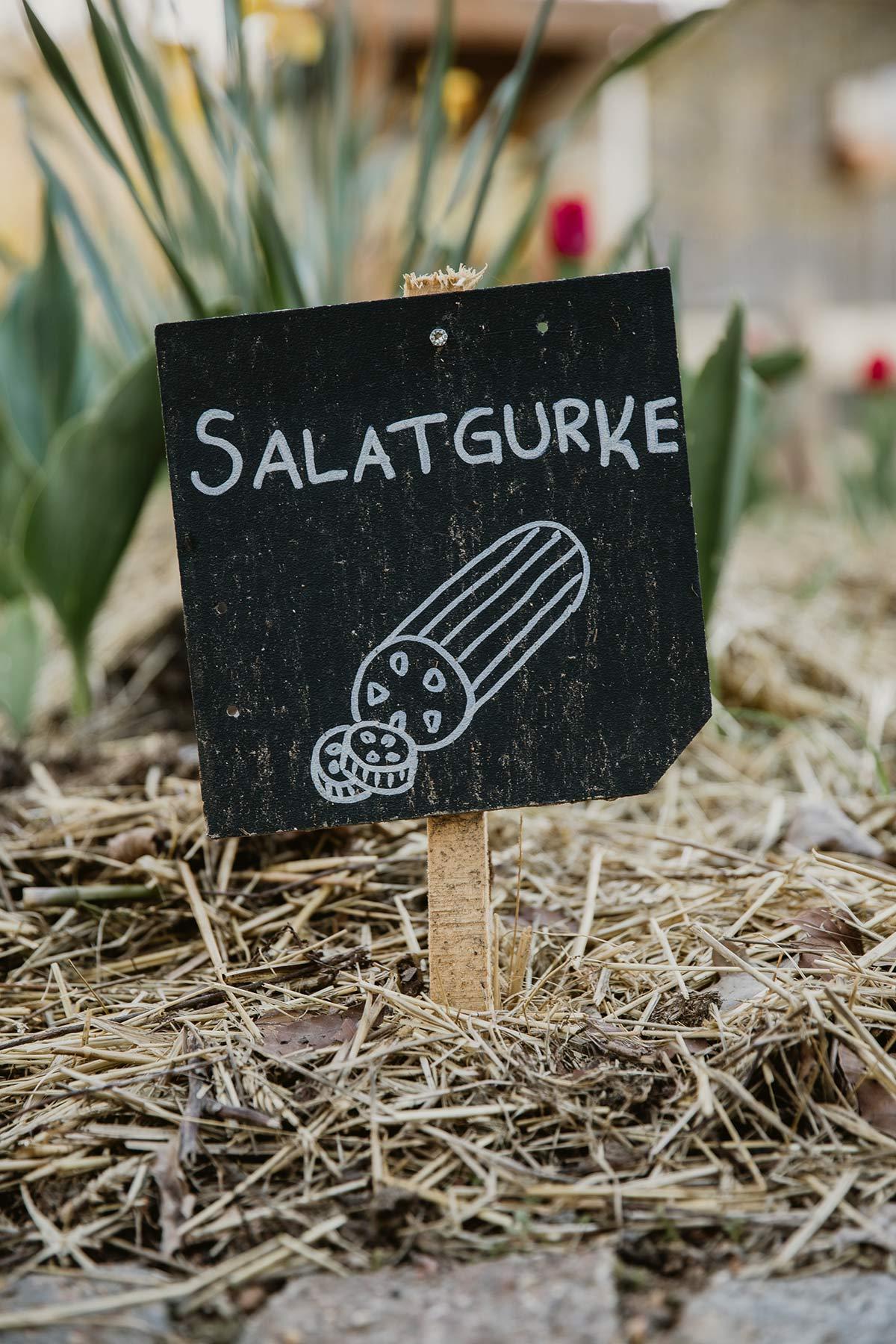 Salatgurke Schild