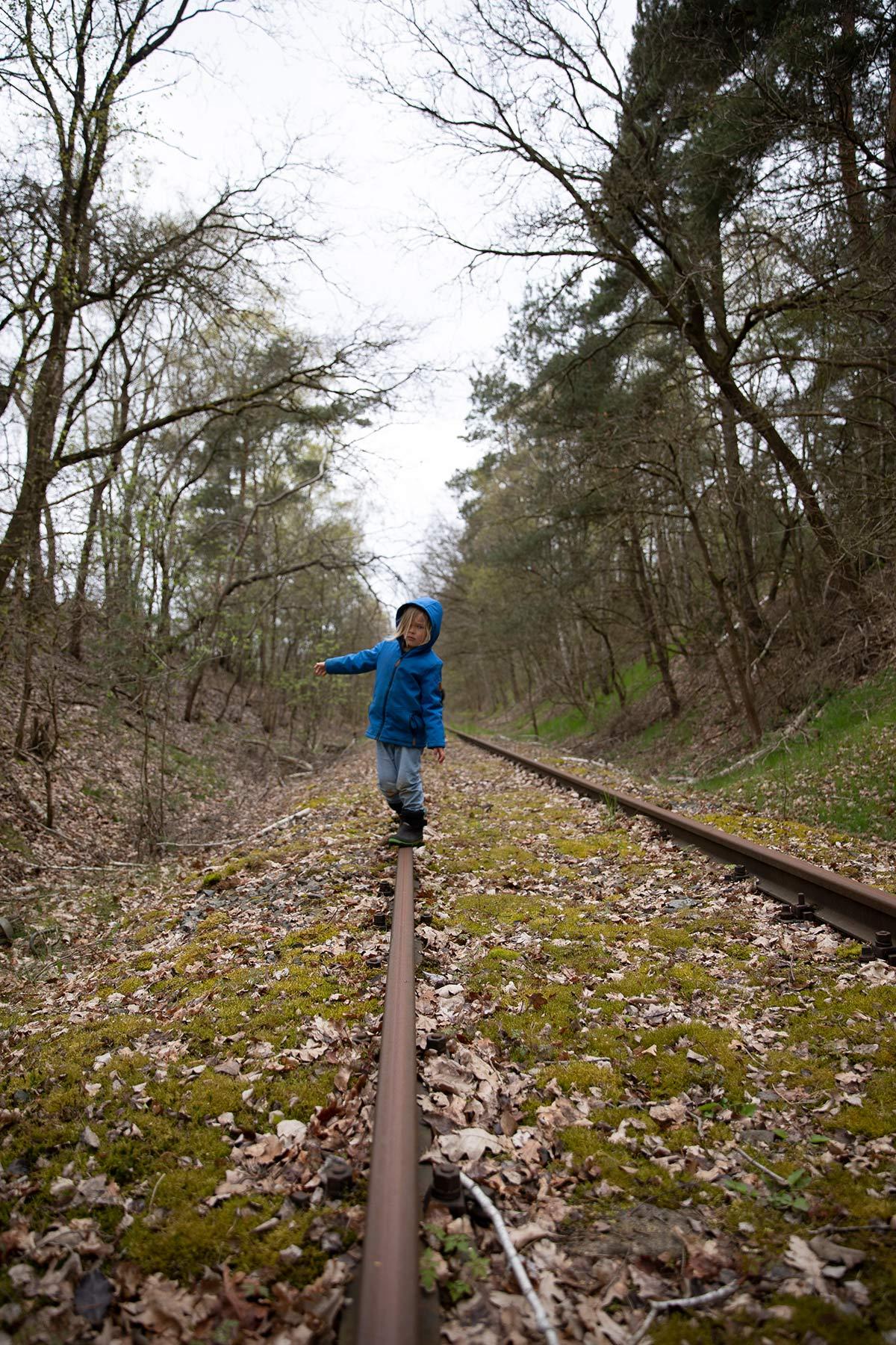 Schienen Draisine Wendland