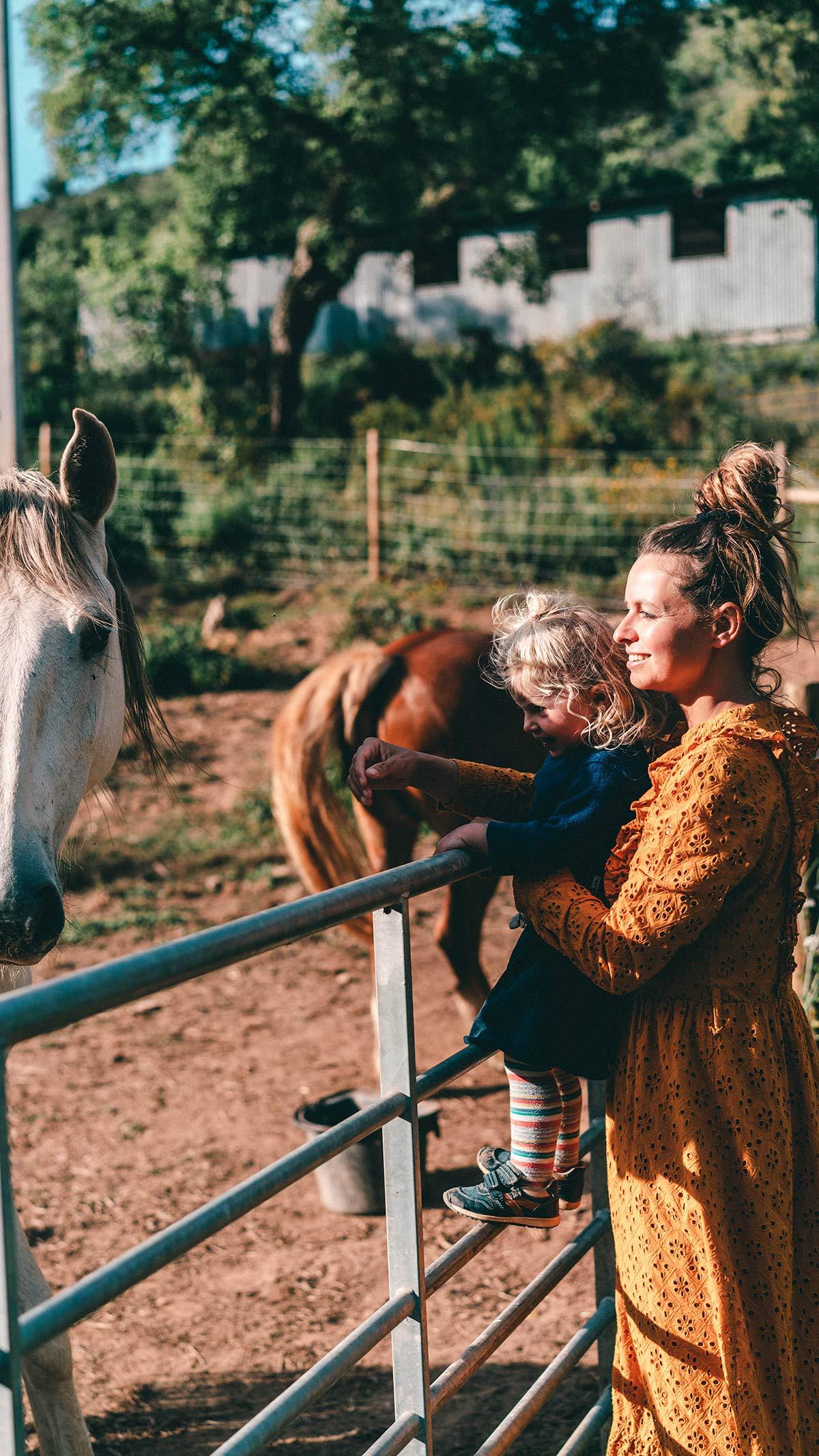 Christine Alma pferde