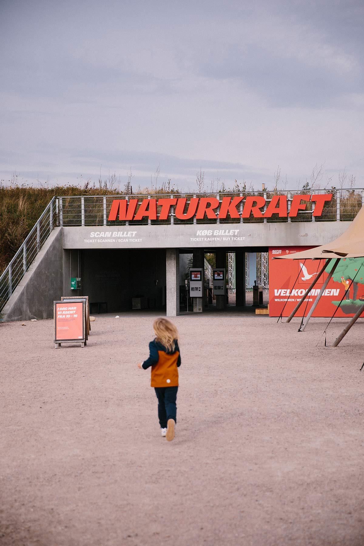 naturkraft dänische nordseeküste